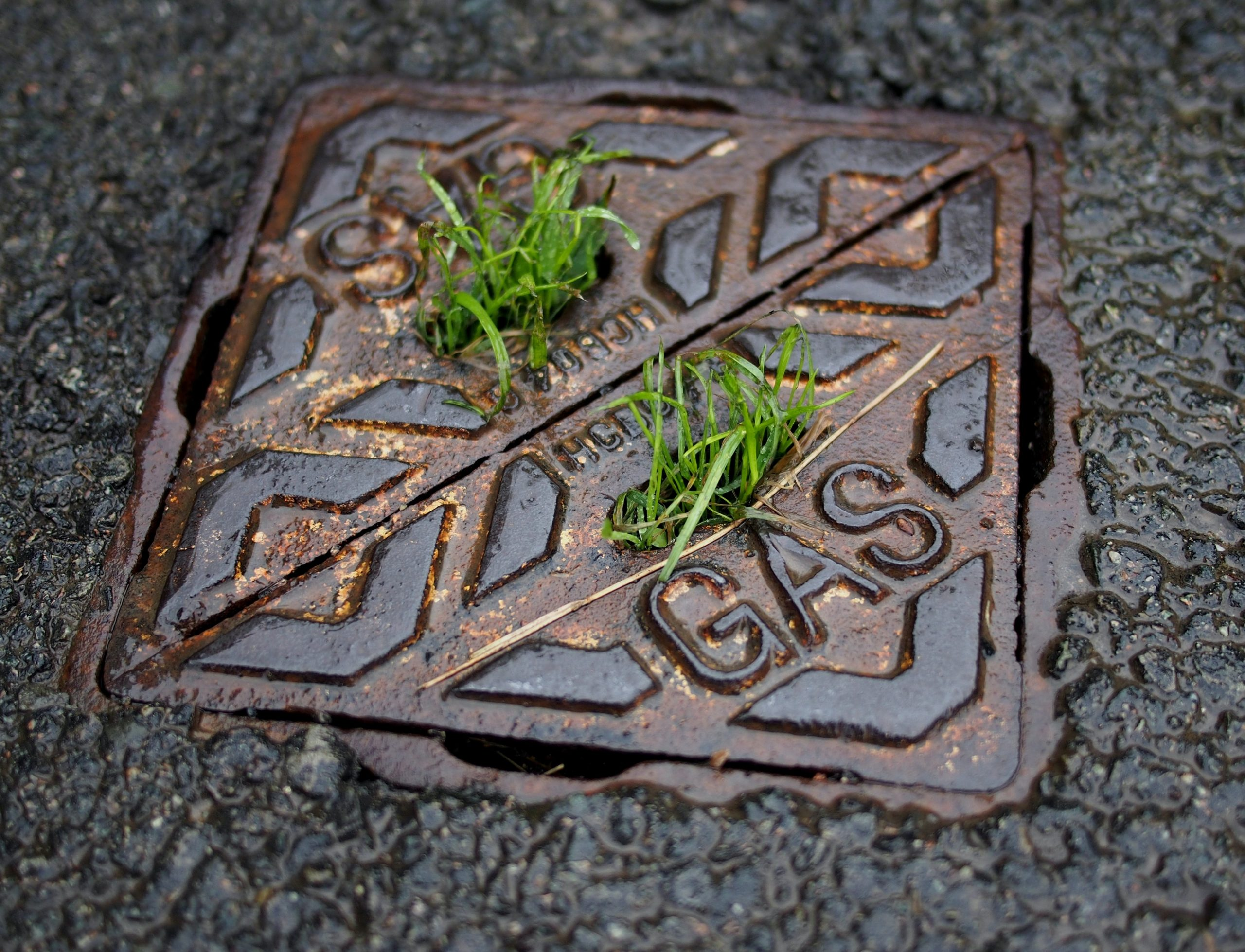 Clearing a Blocked Drain—A Basic How-To Guide for Beginners